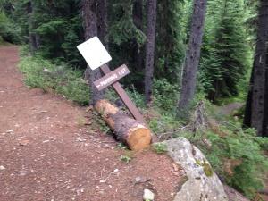 Manning Park Lightning Trail