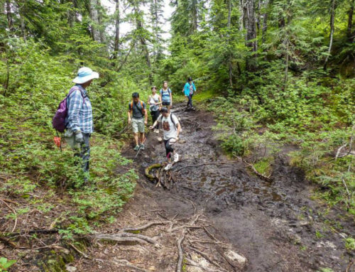 How To Help Fund BC Parks