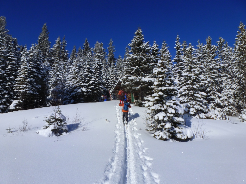 Hickory Wing Ski Touring Club Skiers on Trail