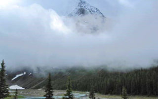 Mount Robson in the mist (Photo by Judy Lett, July 2020)