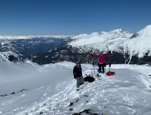 FMCBC Update on Planning for Uphill Ski Routes through Blackcomb Resort